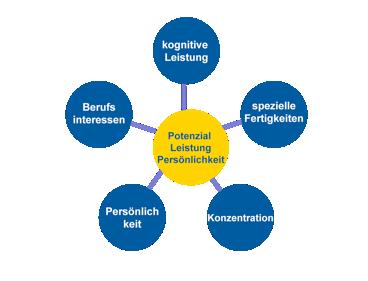 Potenzial, Leistung & Persönlichkeit